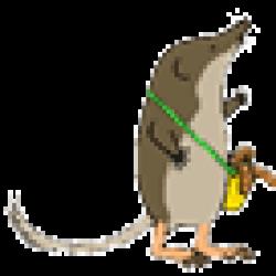 トウキョウトガリネズミ(least shrew)